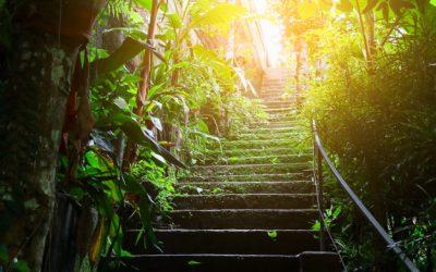 El Gran Cambio del Eje Interior. Parte II: Los escalones de divinización y diabolización
